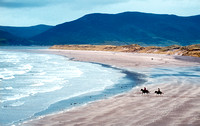 Rossbeigh Beach & horses